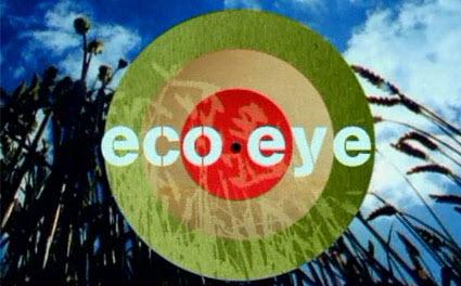 St Patrick's BNS on Eco Eye